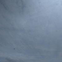 水上バイクとグライダー☆ミ