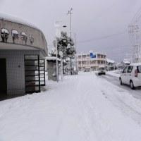 2011年元旦 ブログを始めて4年目、倉吉は大雪。
