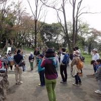 今日は、広見公園でパークレンジャーの親子の方々と過ごしました。