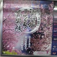 京急の桜ラッピングカー