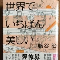 オペラの「演奏会形式」広がる~日経の記事から/藤谷治著「世界でいちばん美しい」を読む