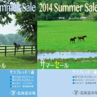 �ڥ��ޡ�������2014(Summer Sale��1����)�ۡ�����̳���(�ǹ���ϾҲ�(������)��Ծ�Ĺ���ӥ塼��)
