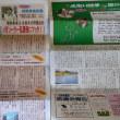 早朝から県議会報告夏季号の配布