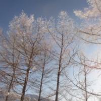 A clear blue sky