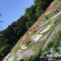 里山ガーデンに行ってきました。