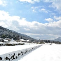 雪の京都大原
