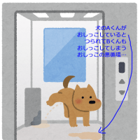 マンション内の犬のおしっこの悪循環…(移動時はルールを守りましょう)
