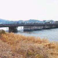 2017 宇治上神社~仏徳山~興聖寺~つり橋~月ケ瀬ダム~平等院と歩きました。