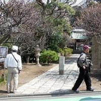 3月18日(土) ハイキング 江の島参拝の道を歩く