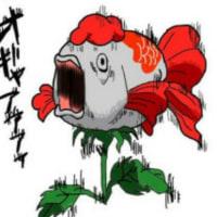 金魚草って、、