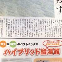 県内の新聞でSUPを紹介していただいてます!