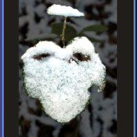 Snow mask