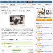 【朗報】新潟県で猫室内飼育化条例改正!愛誤発狂で行政に噛みつく