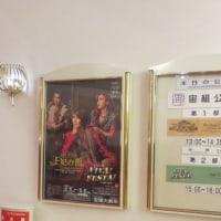 宝塚歌劇宙組公演 「王妃の館 / VIVA!FESTA!」