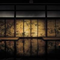 2017年5月14日(日)大徳寺•聚光院 「白の御神楽」