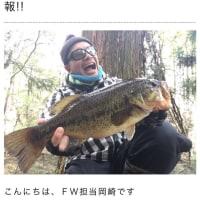 LoveFishとリフラックス‼️