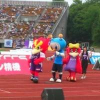 5/28 第15節 横浜FC戦 (京都・西京極競技場)