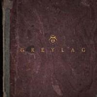 Greylag/Greylag