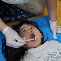 歯は健康の…
