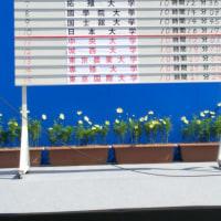 箱根駅伝予選会に行く。