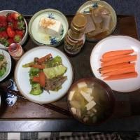 五日目の朝昼晩飯
