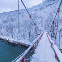 冬の絶景 神代ダム