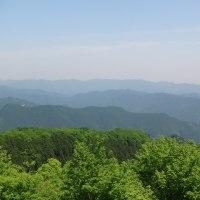 棒ノ折嶺(棒ノ折山)