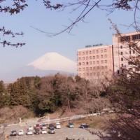 富士♪♪♪