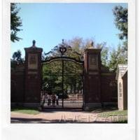 Ⅴ ボストン ② ハーバード大学 Harvard University~ぼくのアメリカ~ My U S A Boston