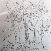樹木のスケッチ