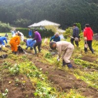【関西中国】中坪BAR・サツマイモ掘り