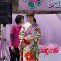おおむら桜まつり 長崎街道シュガーロード さくらカフェ 田淵加奈子 2017・4・2
