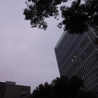 今日の私は710 【10月22日の博多の朝です】