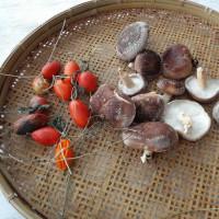 今日の収穫 原木椎茸