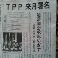 電車つり広告と化した新聞報道。謹賀タイムライン一号