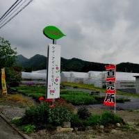 須坂市の種苗屋さん