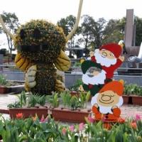 木曽三川公園の「ウインターチューリップ祭」を