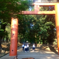 春日大社から東大寺へ。