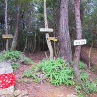 5 白木山~上三田(889m:安佐北区)縦走登山  珍しいキノコ