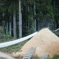 モチ米の籾摺り