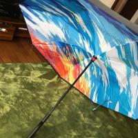 なかおもて傘
