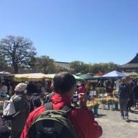 【今日も京都はにぎわってます】