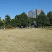 初冬の日比谷:イベント開催中の噴水広場と第一花壇 PART2