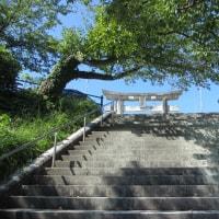 景勝の地 荒戸(津)山から貝原益軒が見た景色とは?~地形散策・光雲神社の参道を歩く