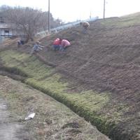 水路掃除と芝桜の除草 ! o(^-^)o