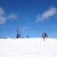 1月22日,日曜の志賀高原速報モード…晴天ピカピカ冷え冷え最高雪質ガラガラ.もう,シアワセ…