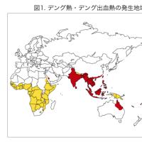 世田谷区でデング熱が!!今日、周辺エリアにチラシ配布&薬剤散布します。