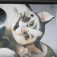 この猫はなんだ?