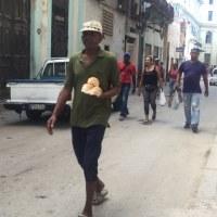 キューバ☆再びハバナ 最終章