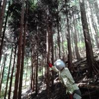 2015/8/23 そば蒔き&森林の楽校下準備 【中坪】